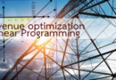 Revenue optimization (Linear Programming)